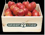 Deutsche Apfel Kiste