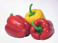 Paprika (Rot und Gelb)